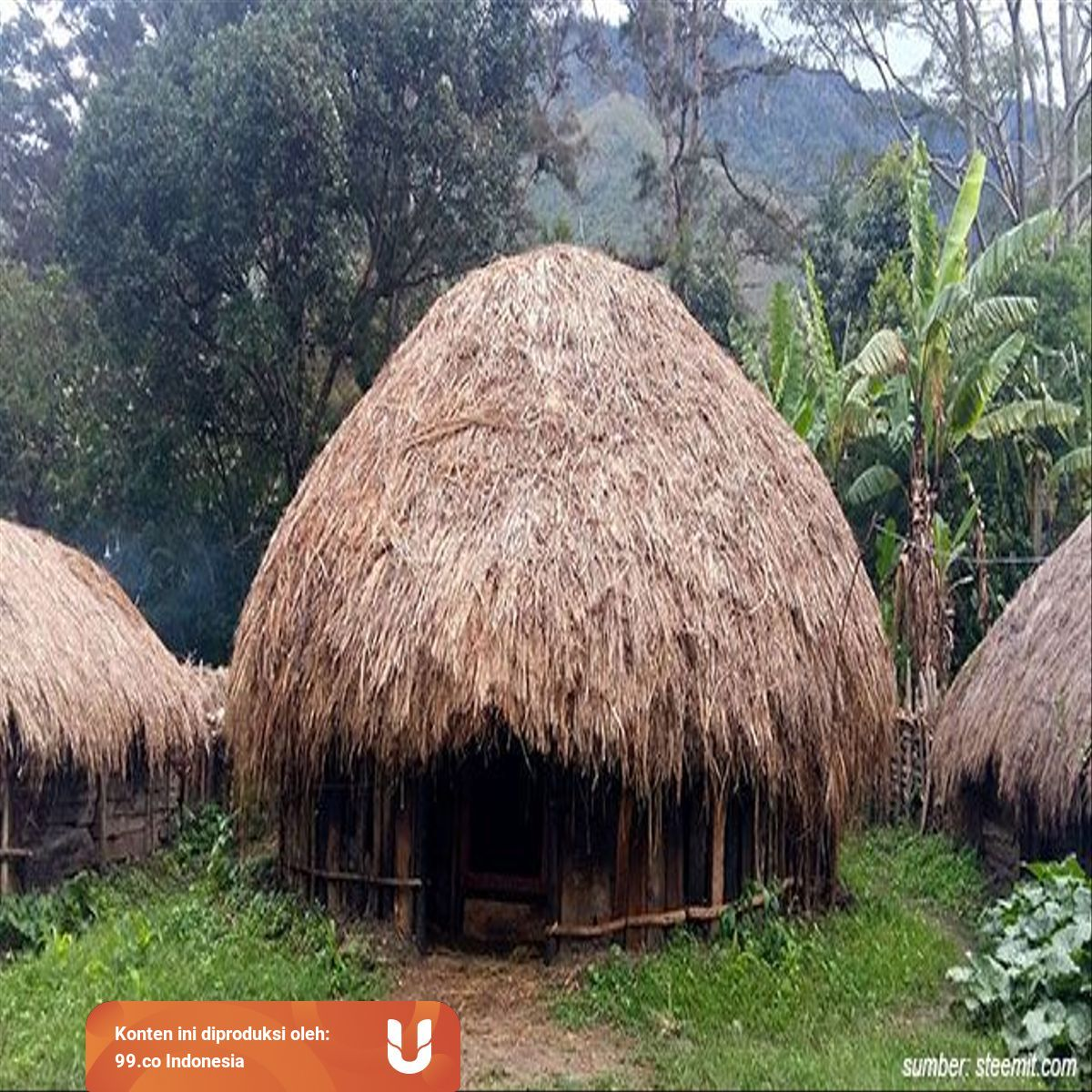 Mengenal Rumah Adat Papua Beserta Penjelasannya Lebih Dalam Kumparan Com