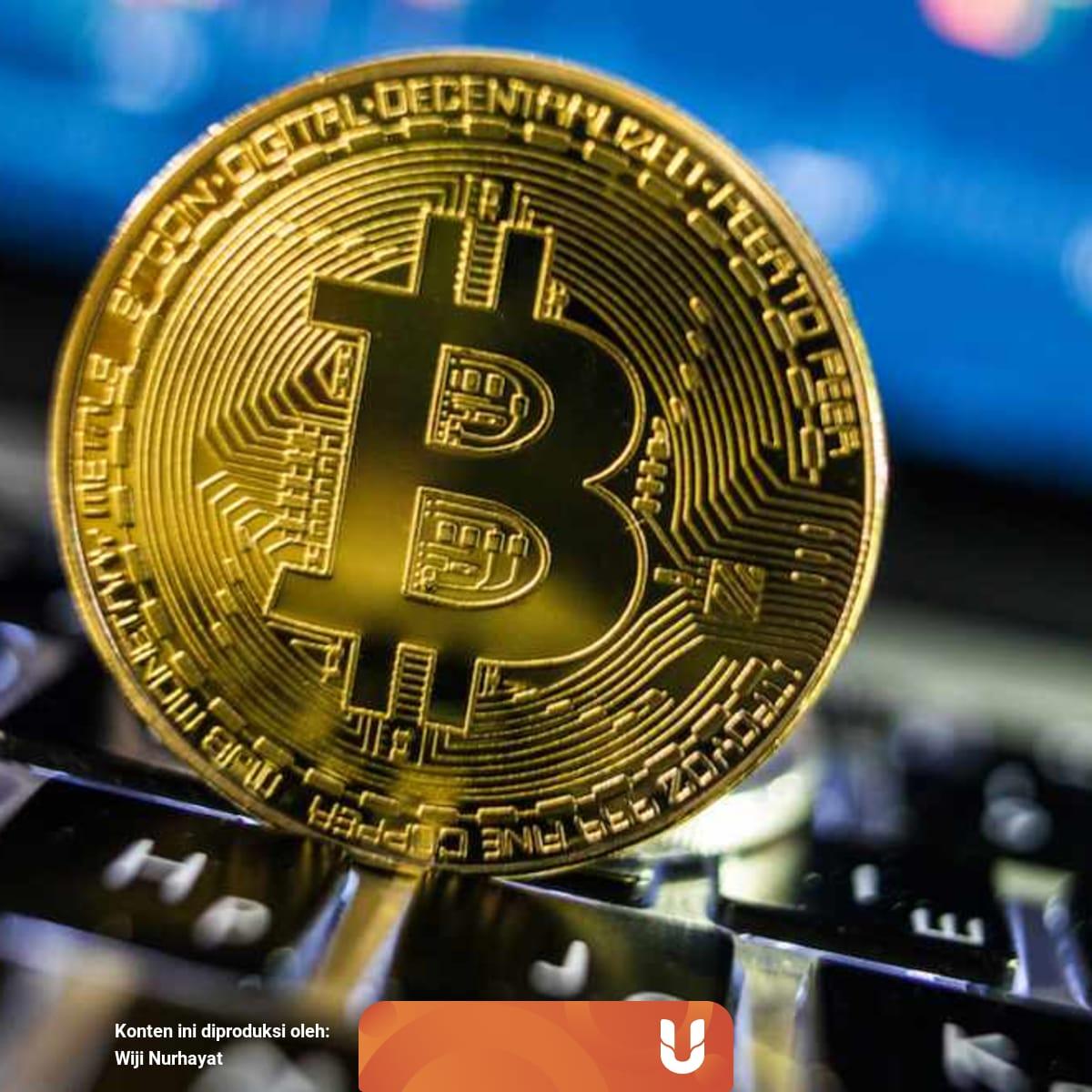 a bitcoin profit tükör)