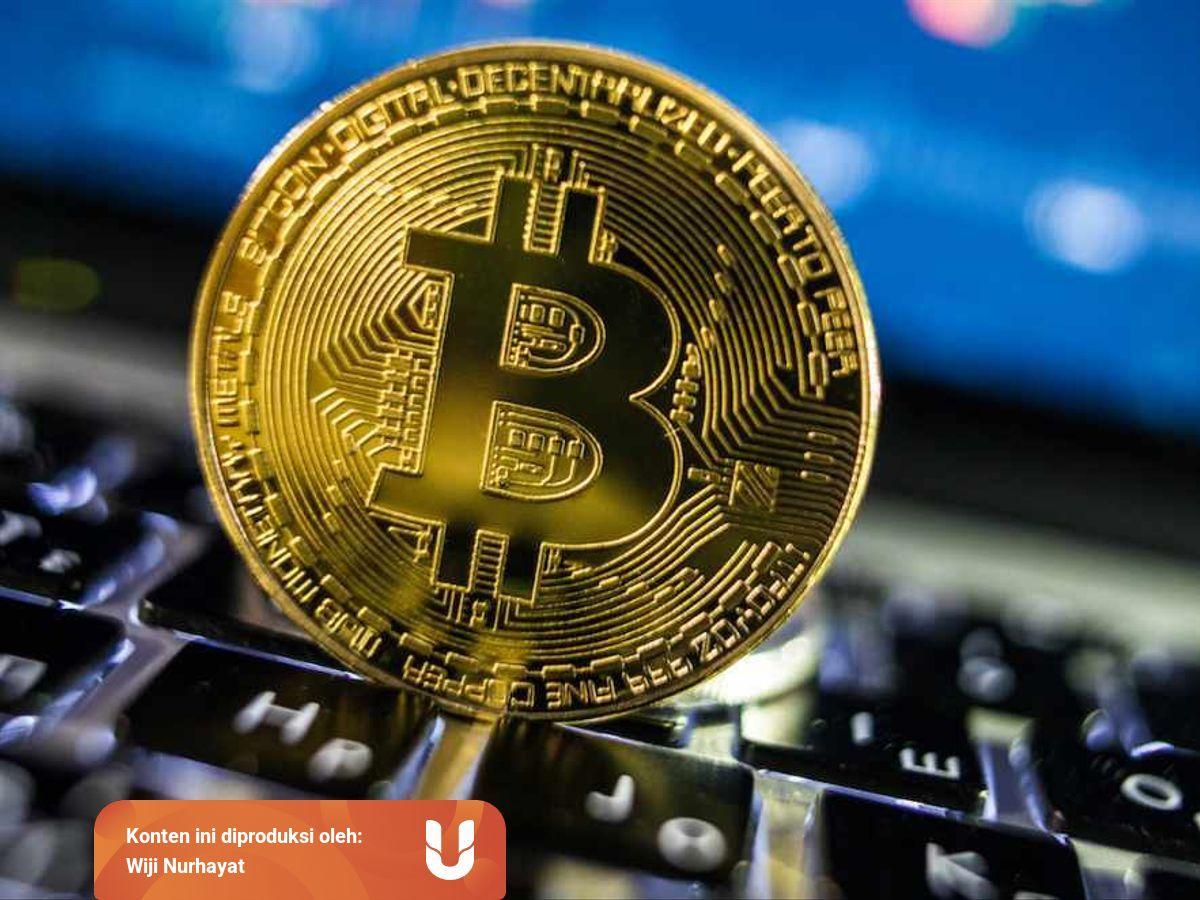 bitcoin profit real sau fals