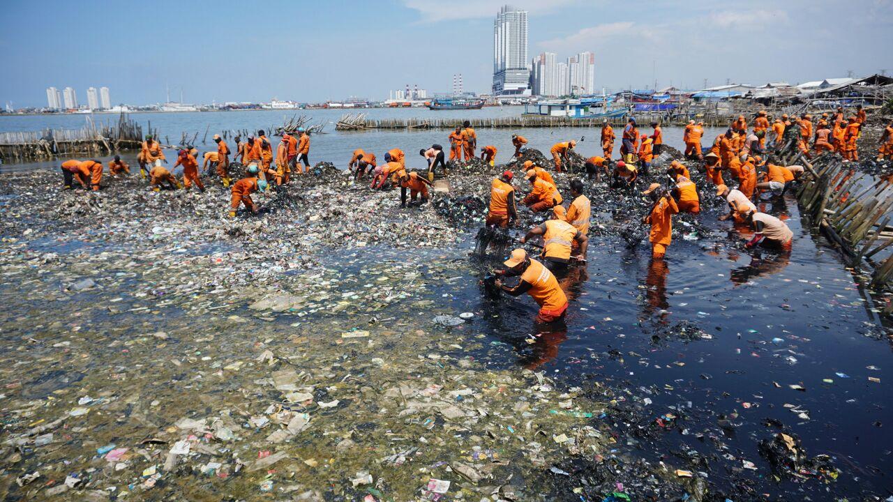 kumplus- Lipsus Paracetamol- Teluk Jakarta