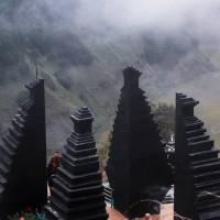 Nikmati Panorama Indah Bromo Forest Yang Cocok Untuk Wisata