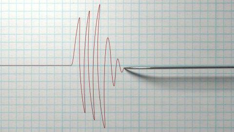 Gempa 5,0 Magnitudo Guncang Tual, Maluku
