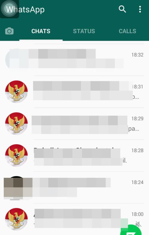 Mendadak Serentak Garuda Dan Merah Putih Di Foto Profil Whatsapp Kumparan Com