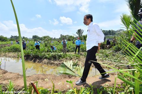 Fadjroel: Jokowi Tegas Tolak 3 Periode, tapi Perdebatan Tak Bisa Dihalangi