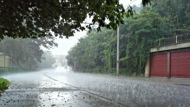 Mengapa Aroma Hujan Begitu Menyenangkan?  (3668)