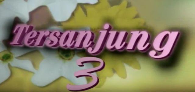 5 Soundtrack Sinetron Zaman Dulu (95128)