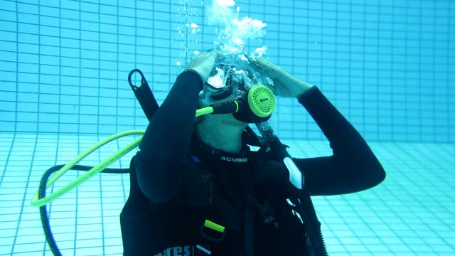 Teknik - teknik yang Wajib Dikuasai Penyelam (946978)