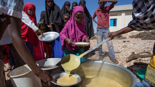Kelapara Somalia
