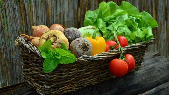 Makanan yang Baik Dikonsumsi saat Hamil Muda (10597)