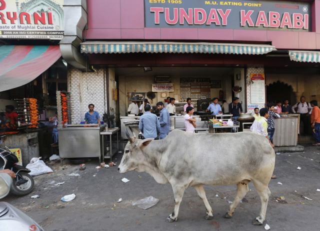 Potong Sapi di Gujarat Bisa Dipenjara Seumur Hidup (363817)