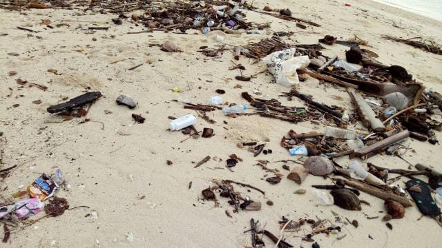 Mengembalikan Pesona Pulau Pombo (102953)
