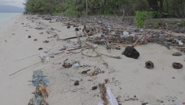 Mengembalikan Pesona Pulau Pombo (102956)