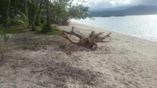 Pulau Ambon