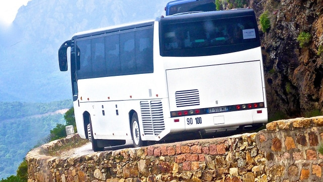 Dishub Denpasar Tangkap 3 Bus Pariwisata yang Hendak Angkut Pemudik Tujuan Jatim (296457)