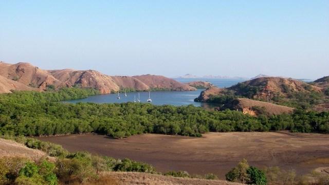 Perketat Wisatawan, Taman Nasional Komodo Terapkan Registrasi Online  (300581)