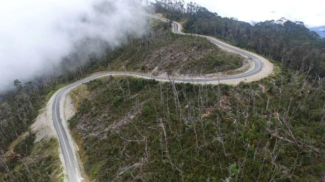 26 Km Jalan Trans Papua Belum Terbangun karena Gangguan Keamanan (533169)