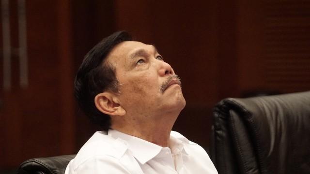 Istana Tunjuk Luhut Jadi Menteri KP Ad Interim, Gantikan Edhy Prabowo (43180)