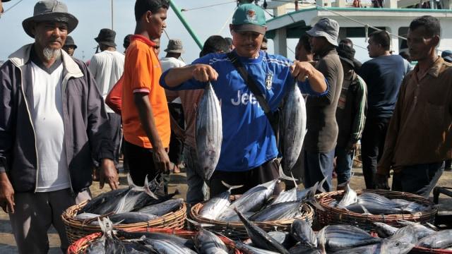Pedagang memperlihatkan ikan tongkol