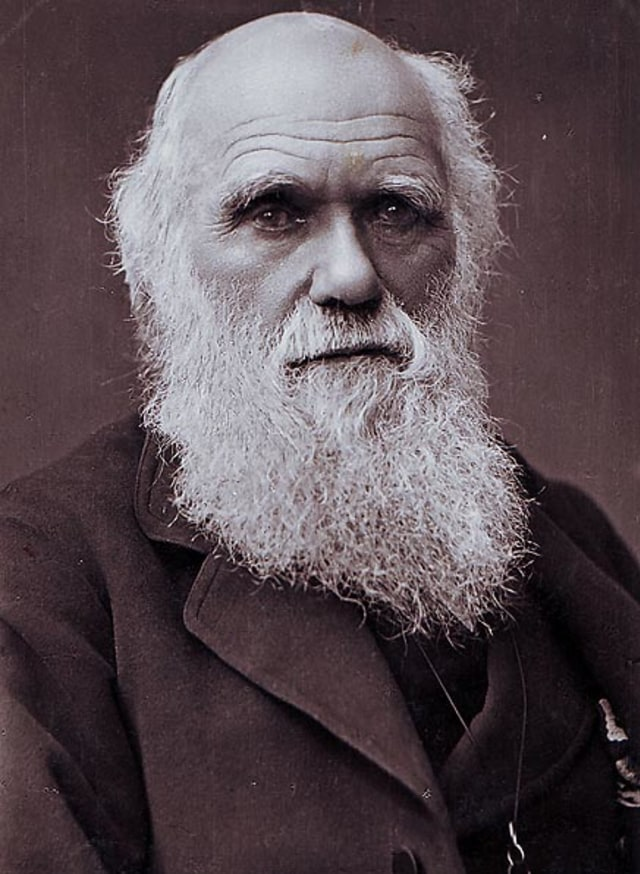 Charles Darwin (NOT COVER)