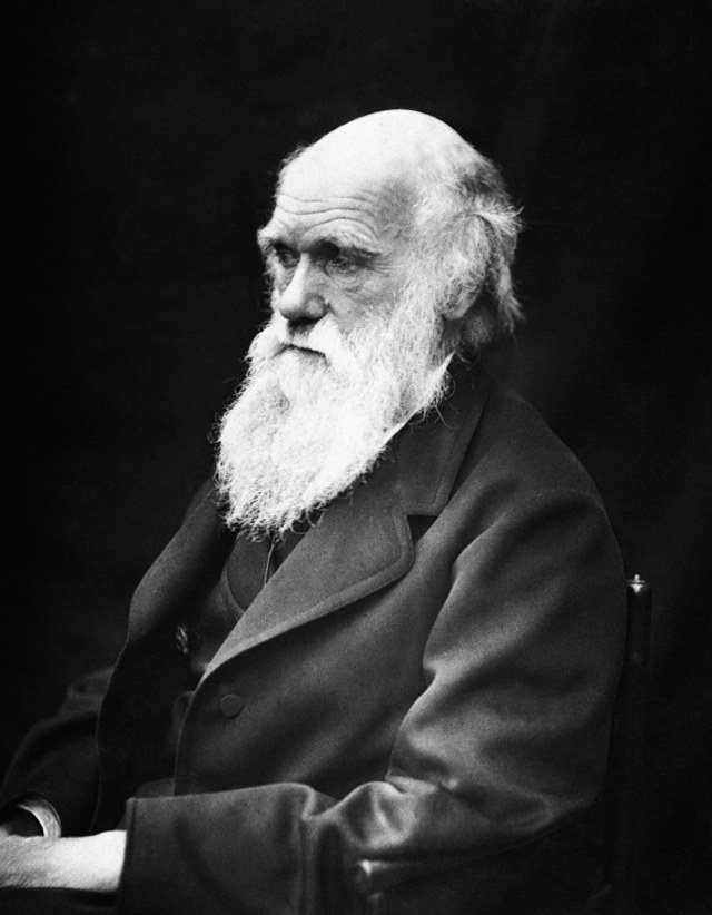 Charles Darwin (NOT COV)