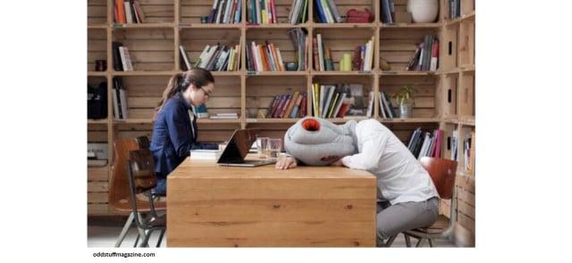 Susah Tidur? Mungkin 5 Bantal ini Bisa Membantu (29585)