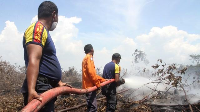 Mengapa Angka Kebakaran Hutan Indonesia di 2017 Turun Drastis? (1175543)