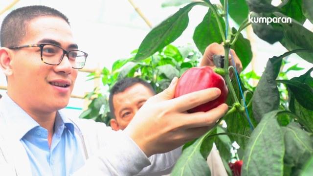 Ecofarming untuk Warga Cianjur (41712)