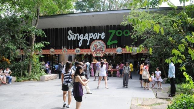Ragam Acara di Singapura Sepanjang 2019 yang Bikin Liburan Makin Seru (4264)