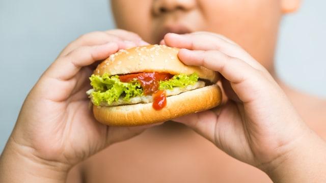 3 Tipe Obesitas dan Tips Memilih Jenis Makanan yang Tepat (147019)
