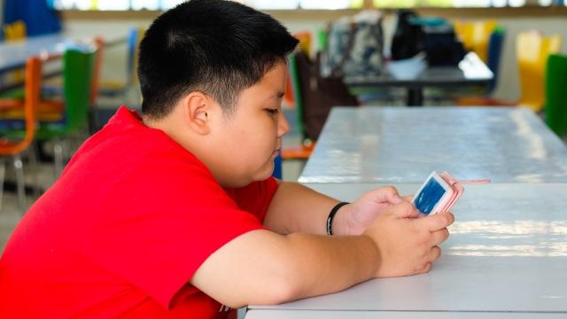 Studi: Bullying Bisa Menyebabkan Obesitas pada Anak (519967)