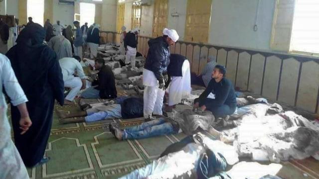 ISIS Cabang Sinai, Pembantai Jemaah Salat Jumat di Mesir (65602)