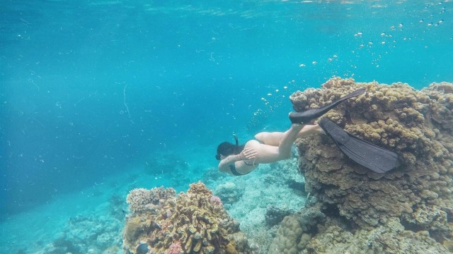 Bawah Laut Moyo