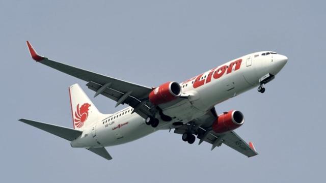 Lion Air dan Wings Air Rute Domestik Tak Lagi Beri Bagasi Gratis (1442653)