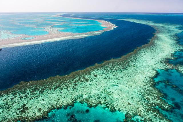 com-Great Barrier Reef