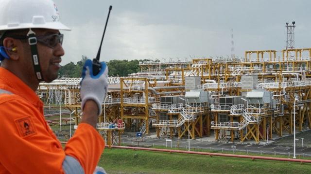 5 Bulan Dikelola Pertamina, Produksi Gas Blok Mahakam Turun 31% (341324)