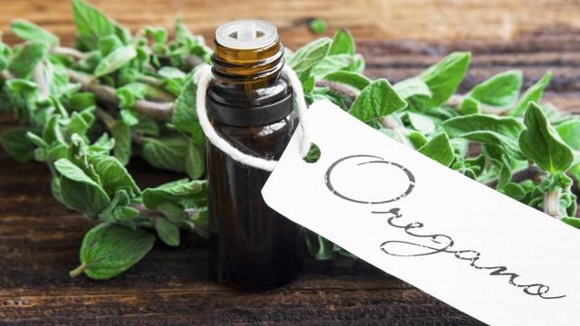 5 Jenis Bumbu dan Rempah yang Berfungsi Sebagai Antibiotik (322872)