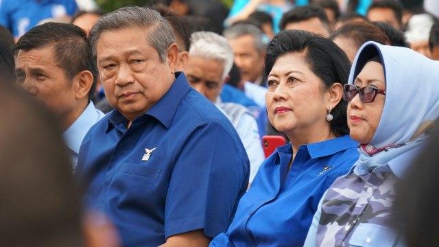 Hinca: Ani Yudhoyono Keluhkan Tangannya Sakit saat Kampanye di Aceh (984406)