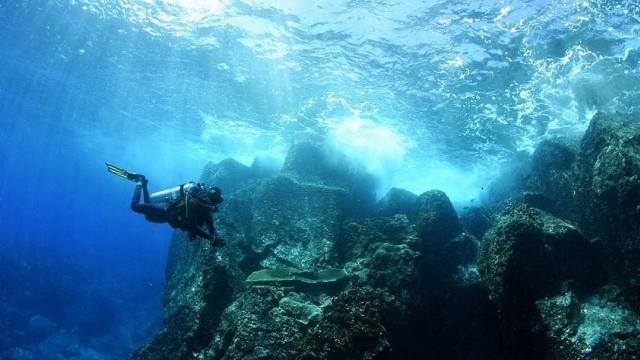 Ini Bedanya Free Diving, Scuba Diving, dan Snorkeling (216662)