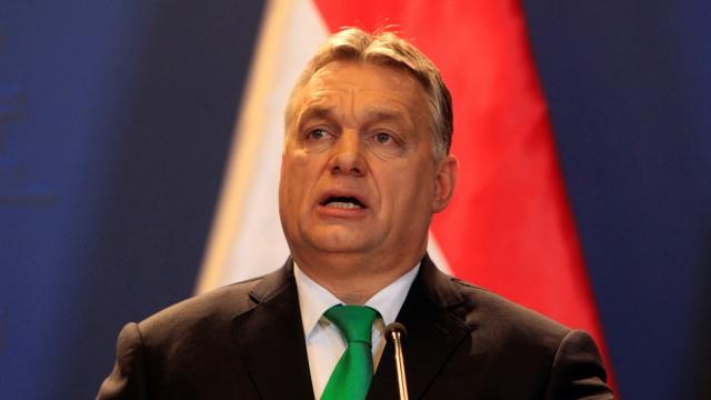 Hungaria Bakal Gelar Referendum soal UU Kontroversial Anti-LGBT (9308)