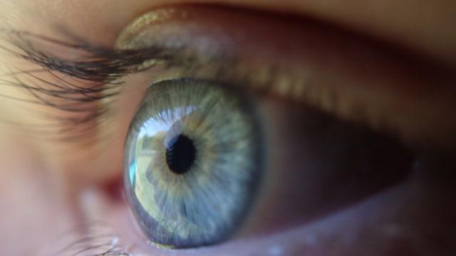 Peneliti Kembangkan Obat Tetes Mata yang Bisa Sembuhkan Kerabunan (405811)