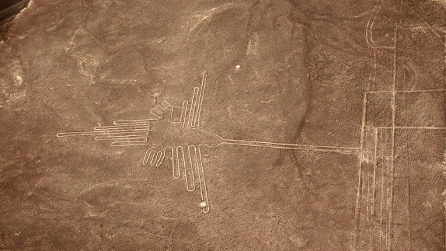 Garis Nazca Bentuk Burung