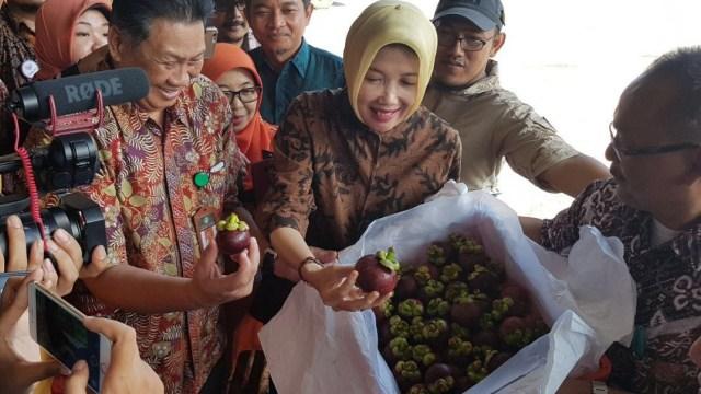 Peluncuran ekspor 16 ton manggis ke China