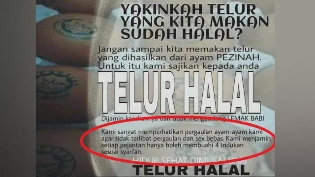 Fakta Di Balik Poster Telur Halal Dari Ayam Bebas Zina Kumparan Com