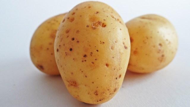 7 Buah dan Sayuran yang Kulitnya Tak Perlu Dikupas (467522)