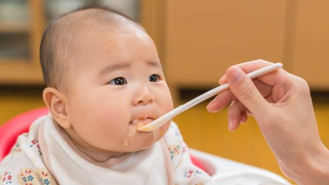 Usia Berapa Bayi Boleh Makan Daging Kumparan Com