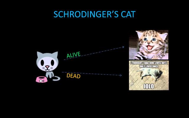 Kucing Schrodinger