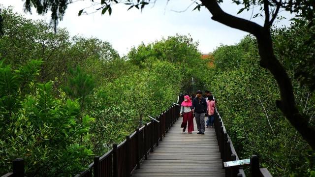 Risma Minta Warganya Liburan Akhir Tahun ke Hutan Kota: Jangan ke Luar Surabaya (274991)