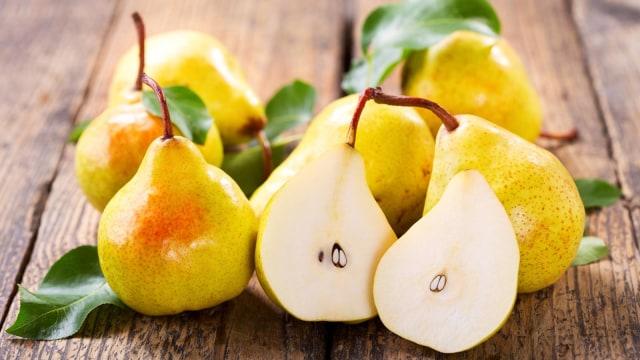 Ilustrasi buah pir