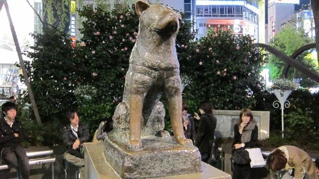 Kisah Sedih di Balik Megahnya Patung Hachiko