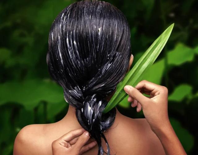 Diy Shampoo Alami Kuatkan Rambut Dari Lidah Buaya Kumparan Com
